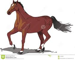 horse drawing in color. Interesting Drawing Beautiful Horse Drawing Color Throughout Horse Drawing In Color S