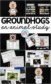 Plant And Animals Adaptations Venn Diagram Groundhog Facts Animal Study