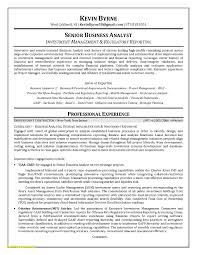 System Analyst Resume Sample Free 24 Systems Analyst Resume Sample Free Sample Resume 19