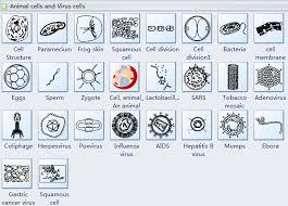 Cells Diagram Symbols