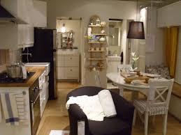 Kleine Wohnung Wohnzimmer Ideen Schräge Decke Küche Rustikal