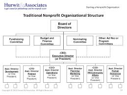 Organizational Chart Nonprofit Template