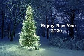 New Year 2020 Hd Wallpaper Hintergrund 2560x1706 Id