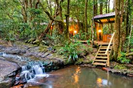 Wonders From Down Under 8 Amazing Airbnb Houses In AustraliaTreehouse Accommodation Nsw