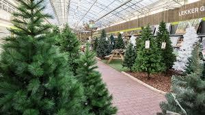 Ontdek De Kersttrends Bij Praxis Praxis