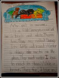 patties classroom reading streets tara and tiree and favorite  why pets rock our pet essays and why we think they are so great
