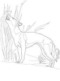 Small Picture New Guinea Singing Dog Singing coloring page Free Printable
