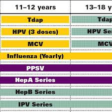 Cdc Immunization Chart Cdc Immunization Chart Kozen Jasonkellyphoto Co