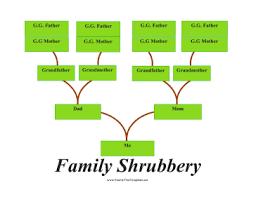 Blank Family Tree 4 Generations Family Tree Shrubbery Template