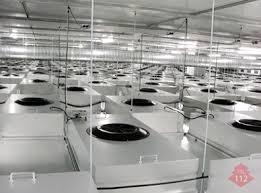 Clean Room  Thai Shinryo LimitedClass 100 Clean Room Design