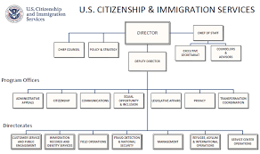 Dhs Org Chart Free Dhs Organizational Chart Templates Download Free