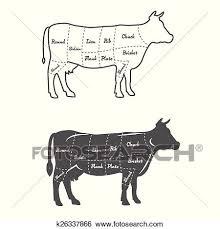 Detailed Illustration Diagram Scheme Or Chart American Cut