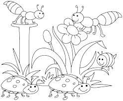 Coloring Pages For Spring Coloring Pages For Spring Free Spring