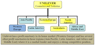 Unilevers Strategies For Competing In Foreign Markets