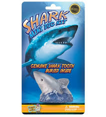 carded mini dig kit shark discover dr cool stemfinity carded mini dig kit shark