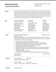 Business Development Manager CV Summary Skills Career ...