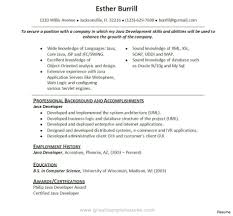 Developer Resume Examples | Best Resume And Cv Inspiration