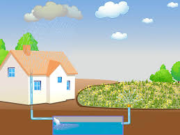 what is water harvesting kids network what is water harvesting