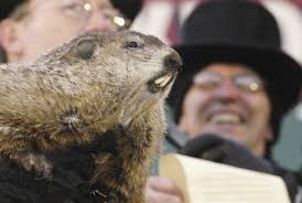 「On February 2, 1887, the first Groundhog Day is observed in Punxsutawney, Pennsylvania.」の画像検索結果