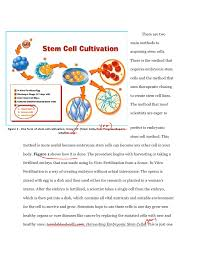 college essays thesis statement for stem cell research stem cell research speech outline essays id 101961