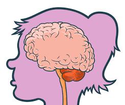Resultado de imagen para NERVOUS SYSTEM FOR KIDS