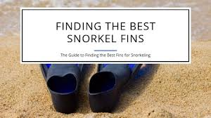 How To Find The Best Fins For Snorkeling Editors Choice