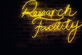 Custom Word Lights Research Nonspecified Neon Signs Custom Neon Signs Neon