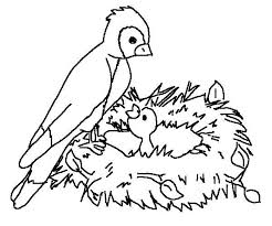Bird Nest Coloring Pages Coloringstar