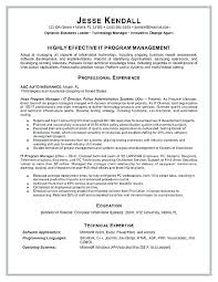 Examples Of Project Management Resumes Technical Project Manager