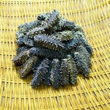 Japanese Hokkaido Dried Sea Cucumber ...