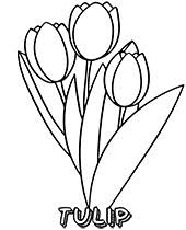 Best free coloring pages for kids & adults to print or color online as disney, frozen, alphabet and more printable coloring book. Flowers Coloring Pages Sheets Topcoloringpages Net