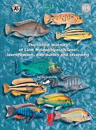 The Cichlid Diversity Of Lake Malawi Nyasa Niassa Identification Distribution And Taxonomy
