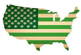 How Buy state Leafbuyer Much Can Guide State Weed I A by frHfCqw