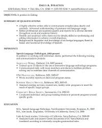 Good Examples Of Resumes Resume Profile Summary Samples And Resume