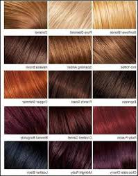 Mens Hair Dye Colour Chart Loreal Hair Color Chart Awesome Red Coloring Styles For Men