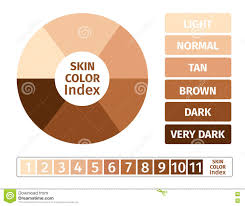 Skin Tone Chart Skin Color Index Infographic 3 Chart Of Skin Stock