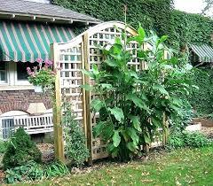 garden arch trellis garden trellises arches garden arch trellis garden arch square lattice vine trellis by garden arch