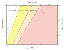 Should You Trust Bmi Or Ignore It The Dadbod Diary