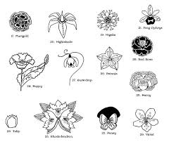 Pin by Effie Armstrong on tattoo in 2020   Flower tattoo, Wolfsbane, Tattoos