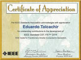 tte through eng tolcachir s recognition tte demonstrates its commitment to play a leading role in the evolution of the electricity market collaborating a