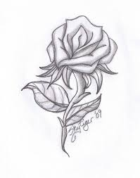 Small Picture 40 best Beautiful drawn roses images on Pinterest Rose drawings