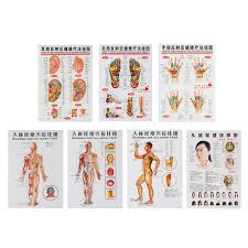 3 Pcs 7pcs Acupuncture Massage Point Map Chinese English Meridian Acupressure Points Posters Chart Wall Map For Medical Teaching