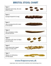 26 Logical Constipation Stool Chart