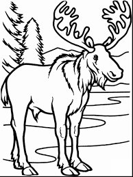 Coloring Pages For If You Give A Moose Muffin Color Awesome Food