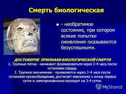 Реферат Терминальные состояния и клиническая смерть pib samara ru Реферат по теме клиническая смерть