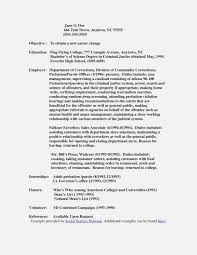 Probation Officer Resumes The Truth About Probation Invoice And Resume Template Ideas