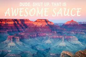 Grand Canyon Quotes Fascinating If Quotes From Andy Dwyer Of 'Parks And Recreation' Were