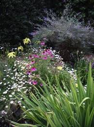 Small Picture 145 best Rock gardens images on Pinterest Butterfly design