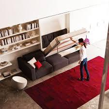 Cool Murphy Bed Ideas Hydatidcystinfo