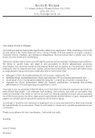 Download Cover Letter For Government Job Ajrhinestonejewelry Com